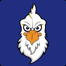 苍鸟防伪软件