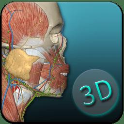 人体解剖学图集3d2021
