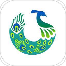 兰孔雀软件