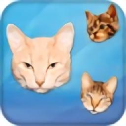 貓頭編輯軟件