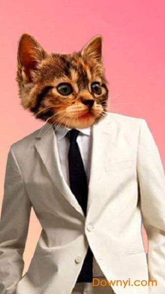 貓頭編輯app下載