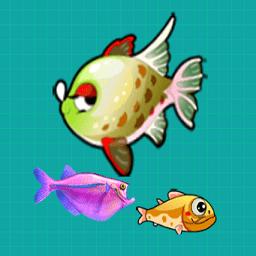 大魚吃小魚2012中文版