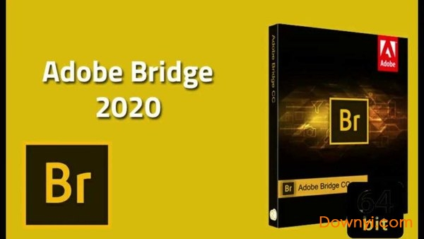 adobe bridge 2020文件�Y源管理�件破解版