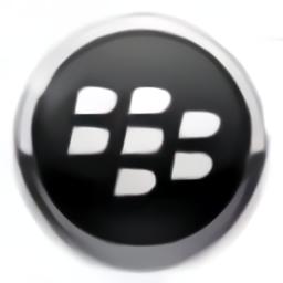 berrybox软件