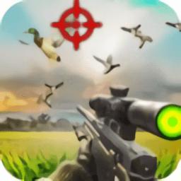 一起来猎鸟鸭手机游戏