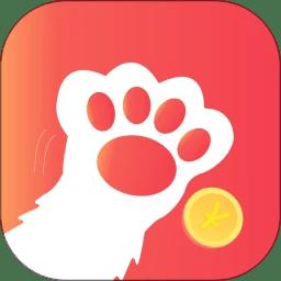 电竞猫手机软件