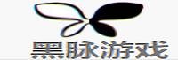 厦门黑脉网络科技有限公司