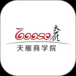深圳天雁商學院
