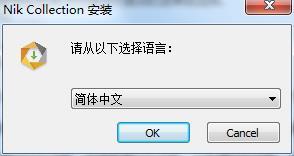Nik Collection2019中文破解版