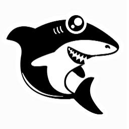 黑鲨装机大师PC安装包