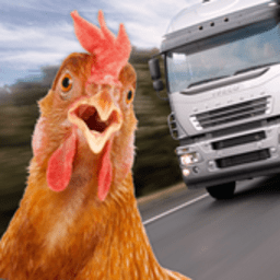 公鸡模拟器游戏