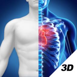 人卫3D人体解剖图谱手机版