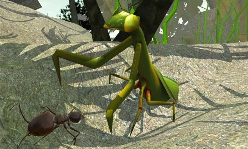 不要吃错昆虫模拟器官方版