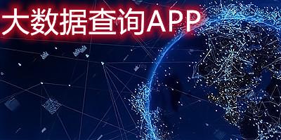 大数据查询app