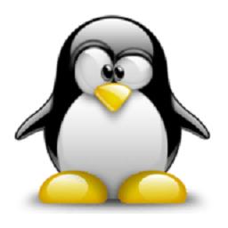 LinuxDeploy漢化版