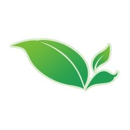 绿韵低碳客户端