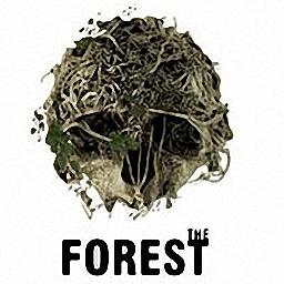 森林The Forest游戏