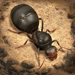 小小蚁国正版(The Ants)v1.5.0 安卓版