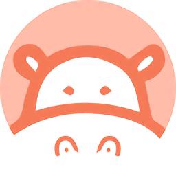 Hippo Video录屏插件