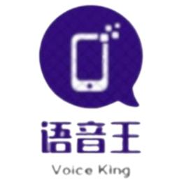 语音王手机版