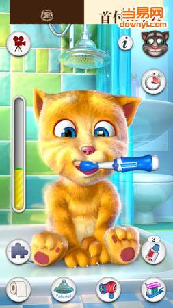 ginger) | 手机电子宠物   会说话的金杰,很可爱的一只小猫,它可以