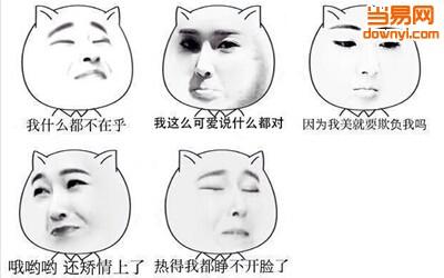 猥琐猫人脸qq表情包下载