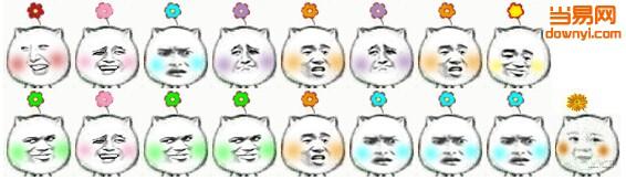 猥琐猫一朵小花表情包图片